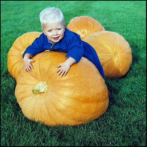 Large pumpkin with toddler