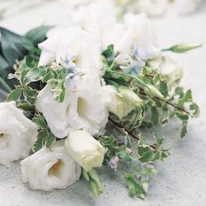 21 Top Cutting Garden Flowers