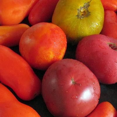 Tomato, Disease Prevention