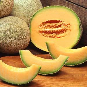 Cantaloupe Hale's Best Jumbo
