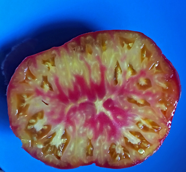 Virginia Sweets heirloom tomato seeds
