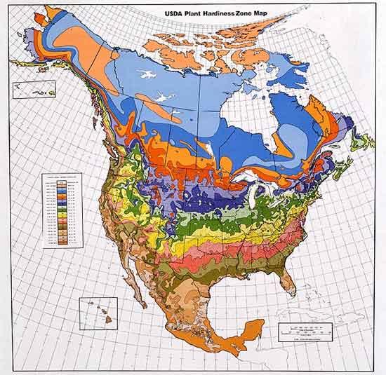 Zone Map - USDA Hardiness Zones